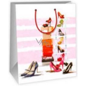 Ditipo Dárková papírová taška velká bílo růžová - krabice, střevíčky 26,4 x 13,6 x 32,7 cm DAB