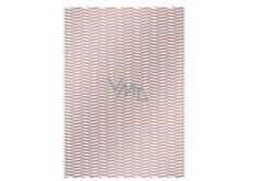 Ditipo Balicí papír Trendy colours 100 x 70, 2 kusy, bronzově bílý světlejší