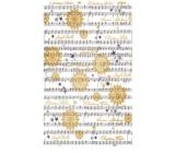 Ditipo Balicí papír Luxusní notová osnova 200 x 70 cm