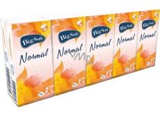 Big Soft Normal papírové kapesníky 2 vrstvé 10 x 10 kusů