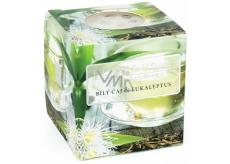 Heart & Home Bílý čaj a eukalyptus Sojová vonná svíčka bez obalu hoří až 15 hodin 53 g