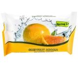 Doctor Wipes Spring Line Grapefruit vlhčené ubrousky 15 kusů