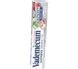 Vademecum Express White 10 Zubní pasta 75 ml