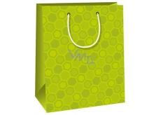 Ditipo Dárková papírová taška střední světle zelená 18 x 10 x 22,7 cm C