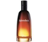 Christian Dior Fahrenheit toaletní voda pro muže 200 ml