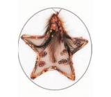 Hvězdička s peříčkem a flitry Měděná 11 cm