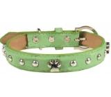Tatrapet Obojek Kožený zelený zdobený s tlapkami 2,5 x 55 cm