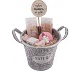 Bohemia Gifts Pro maminku Šípek a květy růže sprchový gel 200 ml + šampon na vlasy 200 ml + šumivá bomba 100 g + toaletní mýdlo 30 g + dřevěný zápich + plechová ošatka, kosmetická sada