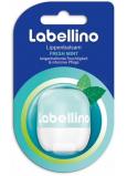 Labello Labellino Fresh Mint pečující balzám na rty 7 g