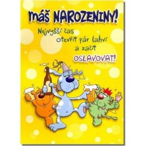 Albi Hrací přání k narozeninám Narozeninová jízda Maxim Turbulenc Jede jede mašinka