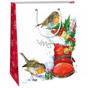 Ditipo Dárková papírová taška 18 x 10 x 22,7 cm bílá bota s dárky ptáčci C