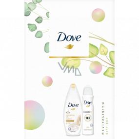 Dove Nourishing Revitalizing Silk sprchový gel pro ženy 250 ml + Invisible Dry Clean Touch antiperspirant sprej 150 ml, kosmetická sada