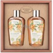 Bohemia Gifts & Cosmetics Arganový olej sprchový gel 250 ml + šampon na vlasy 250 ml, kosmetická sada