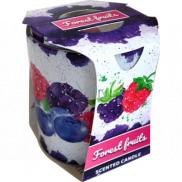 Admit Verona Forest Fruits - Lesní ovoce vonná svíčka ve skle 90 g