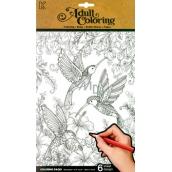 Ditipo Kreativní omalovánky Květiny, ptáčci, motýli 6 listů