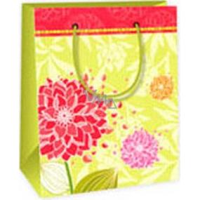 Ditipo Dárková papírová taška 11,4 x 6,4 x 14,6 cm světle zelená červené květy