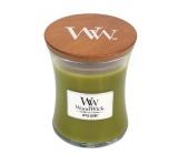 WoodWick Apple Basket - Košík jablek vonná svíčka s dřevěným knotem a víčkem sklo střední 275 g