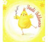 Nekupto Přání k Velikonocům Veselé Velikonoce Jaro začalo 100 x 100 mm 3553 XI