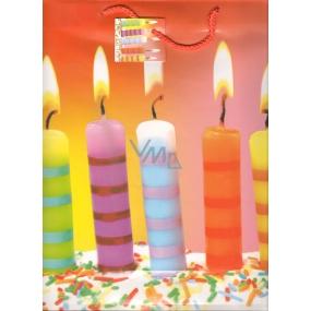 Nekupto Dárková papírová taška velká 32,5 x 26 x 13 cm dortové svíčky 1309 01 KFL