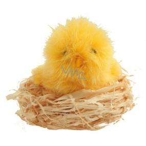Kuře plyšové v přírodním hnízdě 7 cm