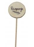 Bohemia Gifts Dřevěný zápich k bylinkám s potiskem - Rozmarýn průměr kolečka je 5 - 8 cm