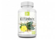 Allnature Kotvičník bylinný extrakt má velmi dobrý vliv na lidské zdraví doplněk stravy 60 tobolek