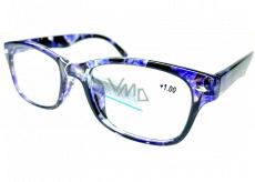 Berkeley Čtecí dioptrické brýle +1 plast černo-fialové 1 kus MC2197