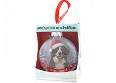 Albi Skleněná vánoční ozdobička se zvířátky - Bernský salašnický pes 7,5 cm x 8 cm x 3,6 cm