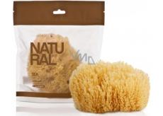 Suavipiel Natural Sea Sponge přírodní mořská houba