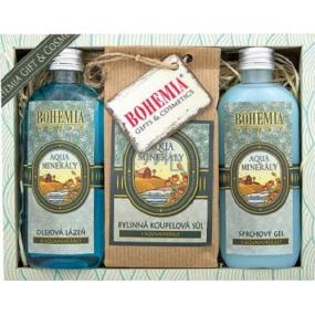 Bohemia Gifts & Cosmetics Aqua Minerály sprchový gel 100 ml + koupelová sůl 150 g + olejová lázeň 100 ml, kosmetická sada