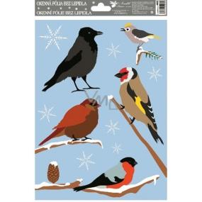 Room Decor Okenní fólie bez lepidla ptáci zimní a vrána 30 x 20 cm