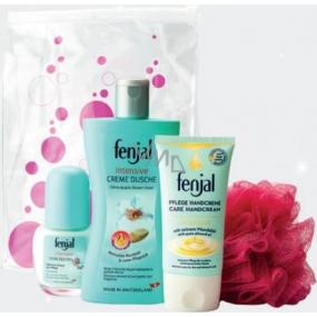 Fenjal Intensive Care krém na ruce 75 ml + sprchový krém 200 ml + deodorant roll-on 50 ml + masážní žínka 1 kus, kosmetická sada