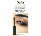 Delia Cosmetics Instant Eyebrown Tint barva na obočí 1.0 černá 6 ml