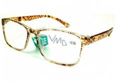 Berkeley Čtecí dioptrické brýle +2,0 plast hnědé tečky 1 kus MC2181