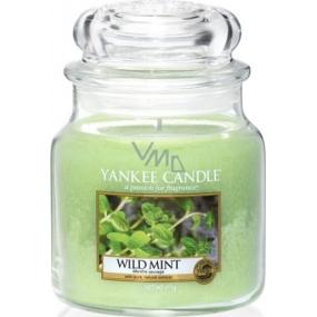 Yankee Candle Wild Mint - Divoká máta vonná svíčka Classic střední sklo 411 g