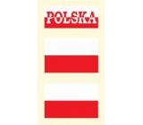Arch Tetovací obtisky na obličej i tělo Polská vlajka 3 motiv