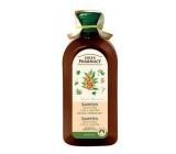 Green Pharmacy Lipové květy a Olej z rakytníku šampon pro suché a poškozené vlasy 350 ml