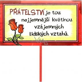 Nekupto Cedulka do květináče Přátelství 30 cm
