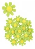 Květy z filcu s lepíkem zelené dekorace 3,5 cm v krabičce 18 kusů