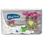 Big Soft Jaro papírové kuchyňské utěrky s potiskem 2 vrstvé 4 kusy