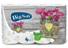 Big Soft Jarní motiv papírové kuchyňské utěrky 2 vrstvé 4 kusy
