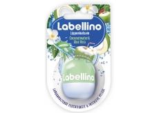 Labello Labellino Coconut Water & Aloe Vera pečující balzám na rty 7 g