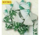 Nekupto Hvězdice střední luxus vánoční, zelená, větvičky 6,5 cm HV 210 50
