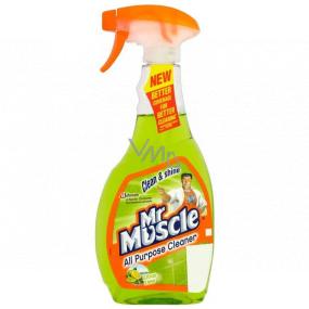 Mr. Muscle Clean & Shine Citrus Lime zelený čistič rozprašovač 500 ml