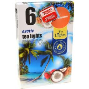 Tea Lights Exotic s vůní exotiky vonné čajové svíčky 6 kusů