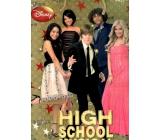 Ditipo Disney Dárková papírová taška pro děti L High School Musical 26,4 x 12 x 32,4 cm