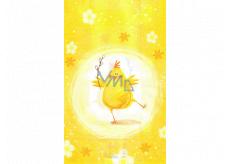Nekupto Velikonoční sáček kuře 180 x 360 mm 005 01 NVE