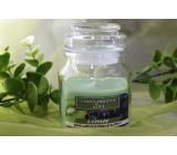 Lima Aroma Dreams Černý hrozen & Kiwi aromatická svíčka sklenička s víčkem 120 g