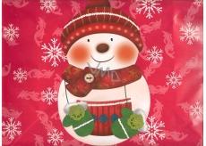 Nekupto Dárková papírová taška střední 32,5 x 25,5 x 13 cm Vánoční 710 30 WBP