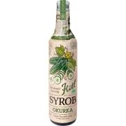 Kitl Syrob Bio Okurka sirup pro domácí limonády 500 ml
